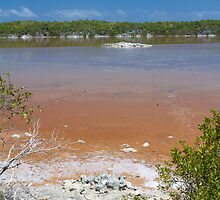 Bahamas, colored salted pond in Eleuthera by Marie-Ange Ostré