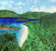 View of beach in St John, US Virgin Islands  by Serenethos