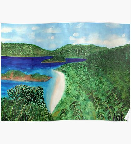View of beach in St John, US Virgin Islands  Poster