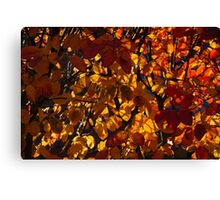 Colourful Sunny Autumn Patterns Canvas Print