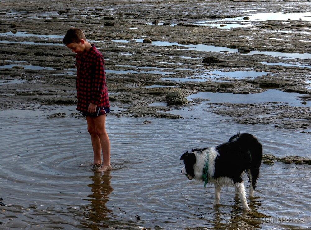 Joy is a boy, a dog and a rock pool.........! by Roy  Massicks