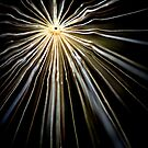 Burst of Light by NEmens