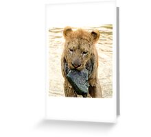 The Lion and the Stone  - Zimbabwe Africa Greeting Card