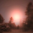 Twilight Time by Greta  McLaughlin
