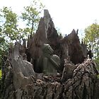 Travelin Buddha Sits atop a Stump of a Throne by wigget