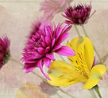 Fresh Flowers by Judy Vincent