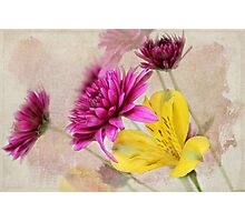 Fresh Flowers Photographic Print