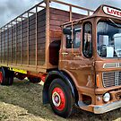 truck and trailer by TIMKIELY