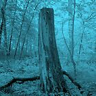 Blue Nightmare by WickedJuggalo