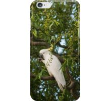 White Cocky iPhone Case/Skin