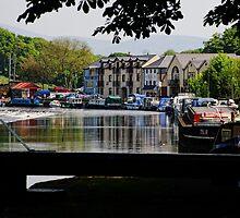 The River Barrow, Tinnahinch, County Carlow, Ireland by Andrew Jones