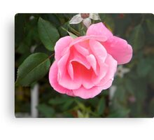 The Pink Promise Metal Print
