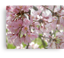 Pure and Gentle Metal Print