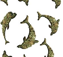 Weed Dolphin Dolphins by wallyw