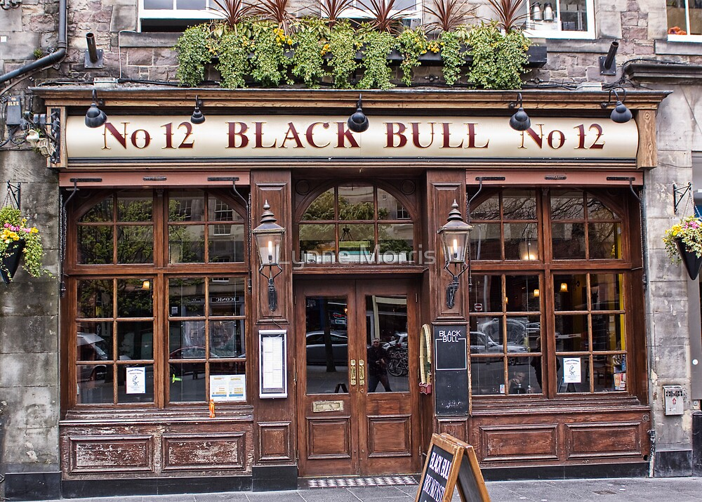 Black Bull by Lynne Morris