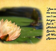 Love Is... by Judy Vincent