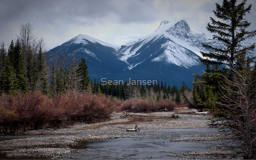 Silence by Sean Jansen
