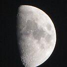 Half Moon by Misty Lackey