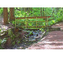 Wooden Bridge Over Mountain Stream Photographic Print