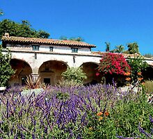Mission San Juan Capistrano - Central Garden by Cupertino