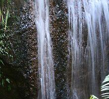 Hidden Falls by randomness