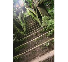 The Forty-Nine Steps of the Grand Staircase Photographic Print