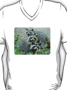 Three Raccoon T-Shirt