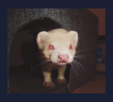 Albino Ferret, Macro Kids Tee