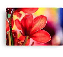 Red Orchid Macro Canvas Print