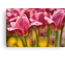 Beauty once upon a time Canvas Print