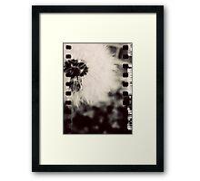 Wishing Flower - Film Overlay Framed Print