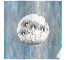 Magic Shrooms Poster
