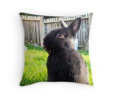 Netherland Dwarf in Summer Garden Throw Pillow