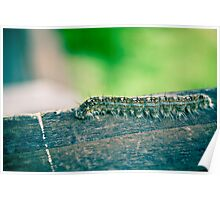 Caterpillar Going Rogue Poster