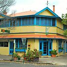 The Blue Cow Hotel by Penny Smith