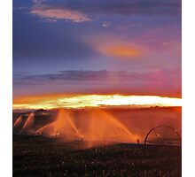 Sunset and Sprinklers Photographic Print