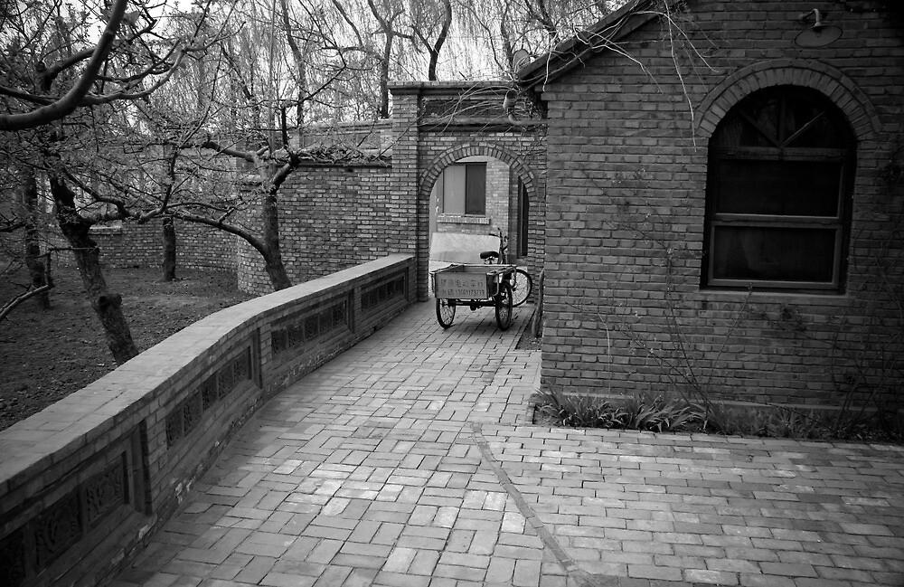 Beijing Building by Christian Devereux