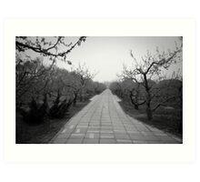 Winter Orchard - Beijing Art Print