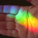 Holding a Rainbow in My Hand by Tama Blough