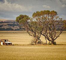 Dumped in a field by AllshotsImaging