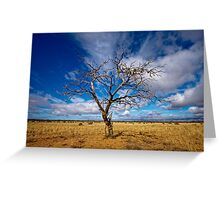 Portrait of a Tree - Steinfeld, South Australia Greeting Card