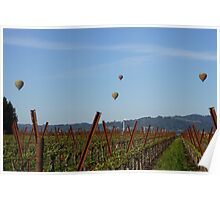 Napa Vineyard Hot Air Balloons Poster