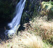 St. Joseph's Falls, Tewkesbury by michellerena