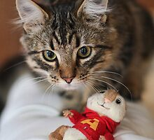 Rubix and the Chipmunk by Barb Leopold