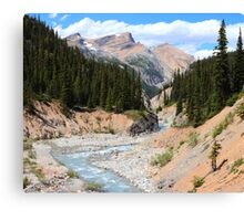 Bow canyon and creek Canvas Print