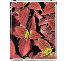 Coleus Foliage Botanical iPad Case/Skin