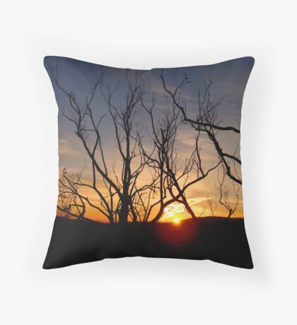 The remnants of Kinglake Throw Pillow