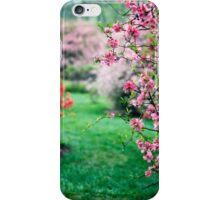 Azalea Bushes iPhone Case/Skin