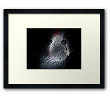 Dart vs Water Balloon Framed Print