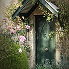 Green Door by Barb Leopold
